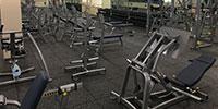 Fitness/ Weight Training
